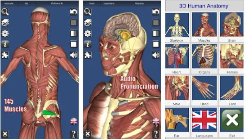 3D Anatomy Paid APK