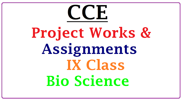 List of proposed assignments and projects for IX Bio Science| CCE Project Works & Assignments for IX Class Biological Science Download Here | Suggestive Project Works forIX Class Biological Science Download Now here | Assigments for IX Class Biological Science as per CCE | | Continuous Comprehensive Evaluation CCE Proposed Project Works for IX Class Biological Science Download | Download Model Projects and Assignemnts for Science of IX Class Biological Science cce-project-works-assignments-for-IX-download/2017/01/cce-proposed-project-works-assignments-for-ix-class-biological-science-download.html