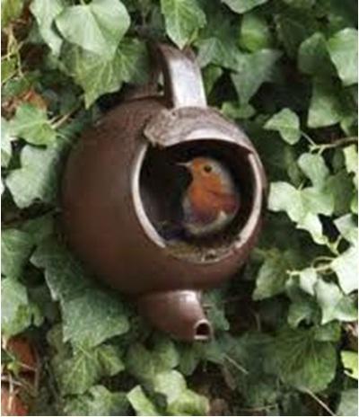 Kalau ukurannya cukup besar, bird feeder ini juga bisa jadi sarang burung liar.