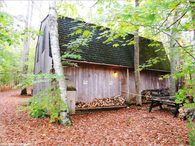 Leña en Lakeside Cedar Cabins en Maine