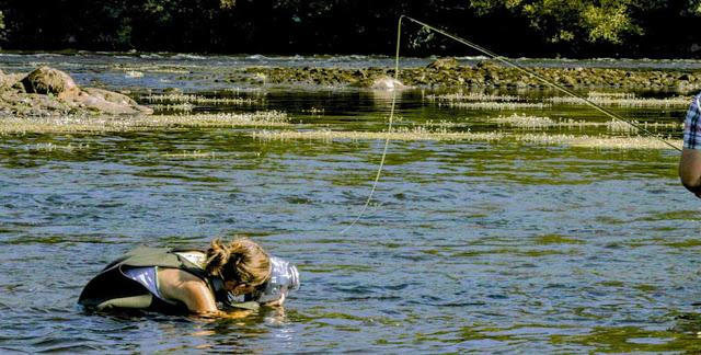 http://aquapac.es/es/fundas-estancas-camara-foto-video/30-funda-estanca-sumergible-camara-reflex-lente-dura-458.html