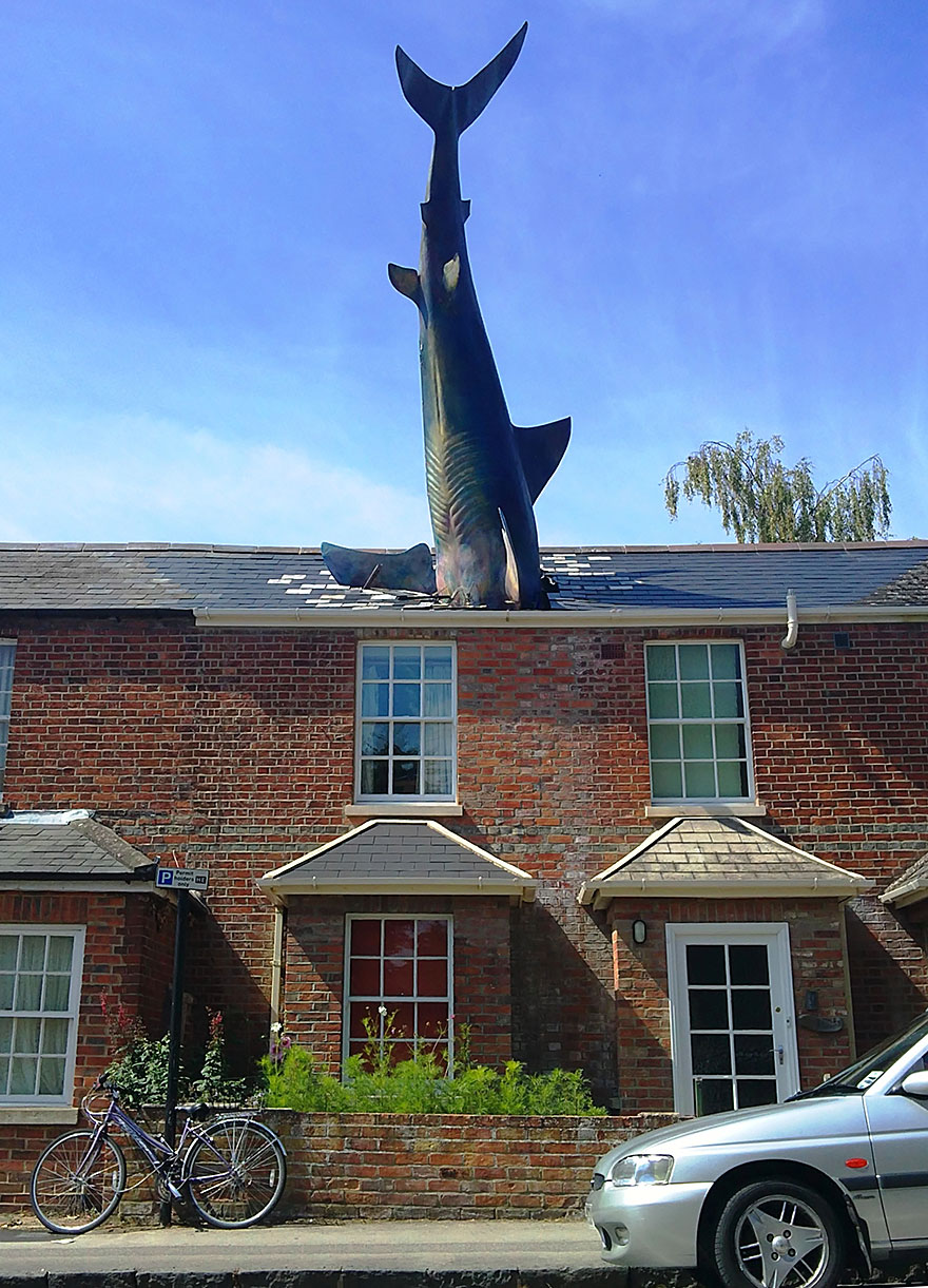 42 Of The Most Beautiful Sculptures In The World - The Shark, Oxford, Uk