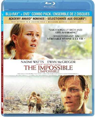 The Impossible 2012 Dual Audio 720p BRRip 825Mb x264