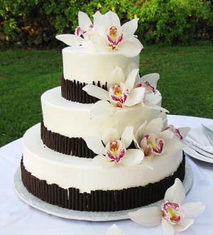 wedding cakes modern designs modern wedding cake designs wedding decoration 25045