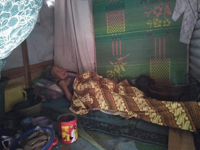 Hidup Sebatang Kara, Papuk Mune Tinggal di Rumah Berukuran dua Meter