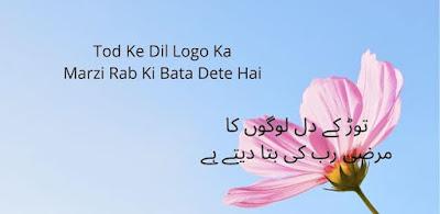 Pain Quotes Urdu