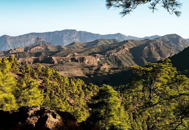 Wandern auf Gran Canaria – Von El Juncal ins Naturschutzgebiet Pajonales 14