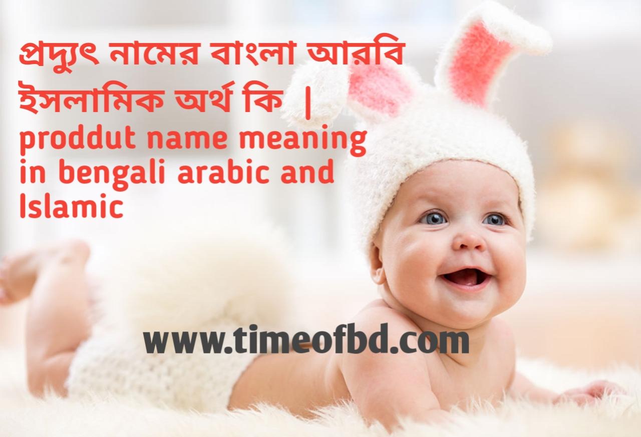 প্রদ্যুৎ নামের অর্থ কী, প্রদ্যুৎ নামের বাংলা অর্থ কি, প্রদ্যুৎ নামের ইসলামিক অর্থ কি,  proddut name meaning in bengali