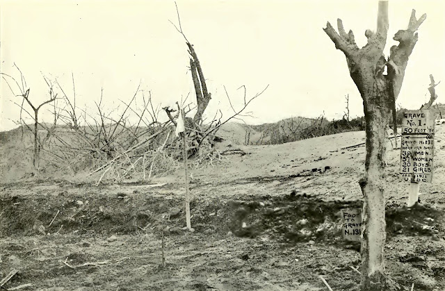 Grave in which were buried 131 victims of the eruption.  Note how the trees have been devastated.