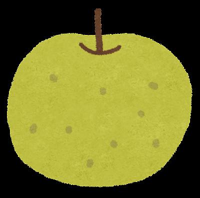 梨のイラスト(フルーツ)