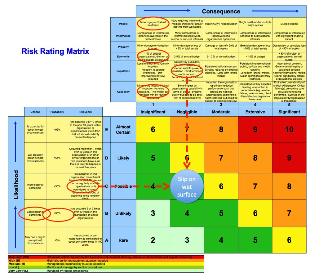 Internal Audit of Project Risk Management Practices