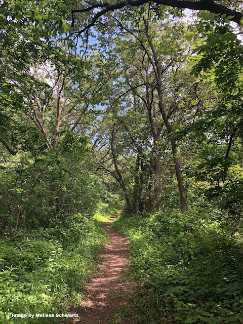 Natural paths at Lewis & Clark Monument Park took us through forest and grassland.