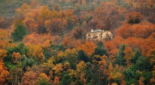 Το βγαλμένο από παραμύθι πέτρινο σπίτι σε δάσος στο Πήλιο -Χωμένο μέσα στα δέντρα, παραδοσιακό και χουχουλιάρικο