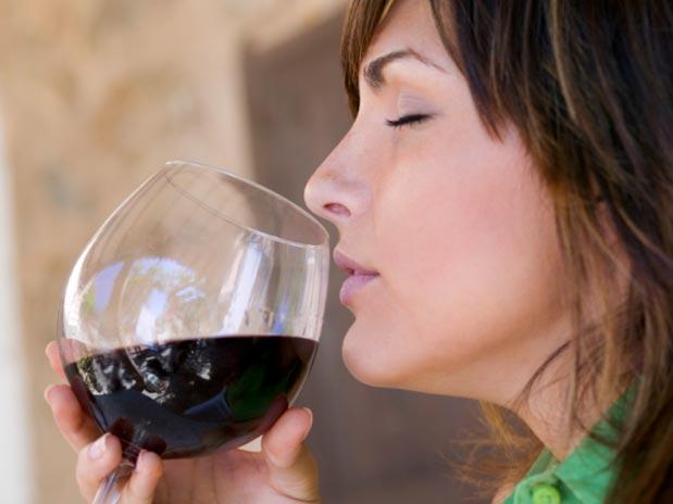 Cómo iniciarte en la cata de vinos