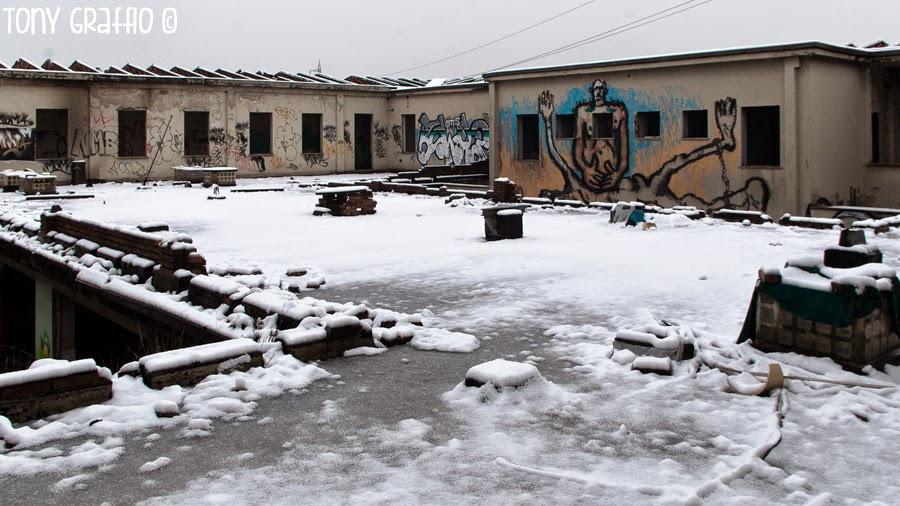 Canemorto e la neve sul terrazzo del Castello di Zak