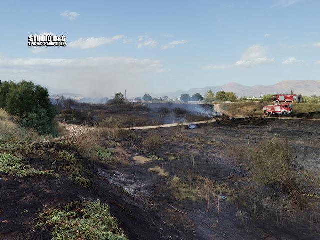 Φωτιά στον ποταμό Πάνιτσα στη Νέα Κίο Αργολίδας