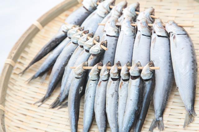 Konyol, Polisi di Jepang Malah Menemukan Ikan Mentah Saat Menggerebek Sebuah Bilik Klub Malam