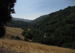 Valley view from summit of Palomares Road, Castro Valley, California