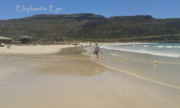 Our beach with the yellow buoys of the shark net