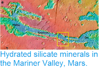 https://sciencythoughts.blogspot.com/2015/03/hydrated-silicate-minerals-in-mariner.html