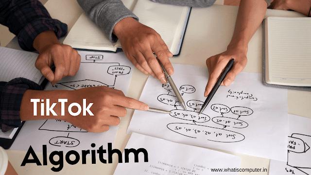 Understanding the TikTok Algorithm