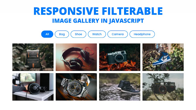 Responsive Filterable Image Gallery using HTML CSS & JavaScript
