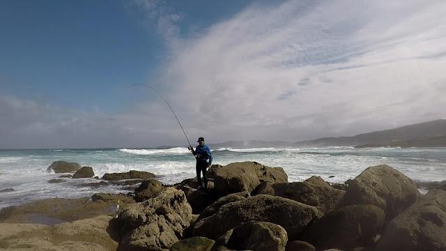 CA%25C3%2591A - Buscando lubinas en distintos escenarios de pesca