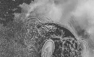 Shoe in water.