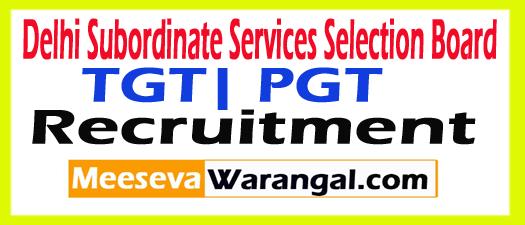 Delhi SSSB TGT| PGT 15058 Recruitment Form 2017