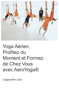 https://yogaaerien.blogspot.com/2020/04/yoga-aerien-profitez-du-moment-et-formez-de-chez-vous-avez-aeroyoga-fly.html