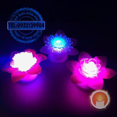 Đèn led hoa chuyển sắc