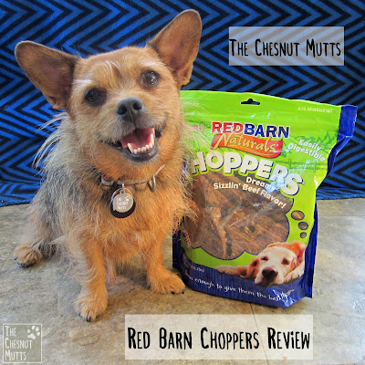 The Chesnut Mutts Red Barn Choppers Review