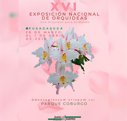 XVI EXPOSICIÓN NACIONAL DE ORQUÍDEAS