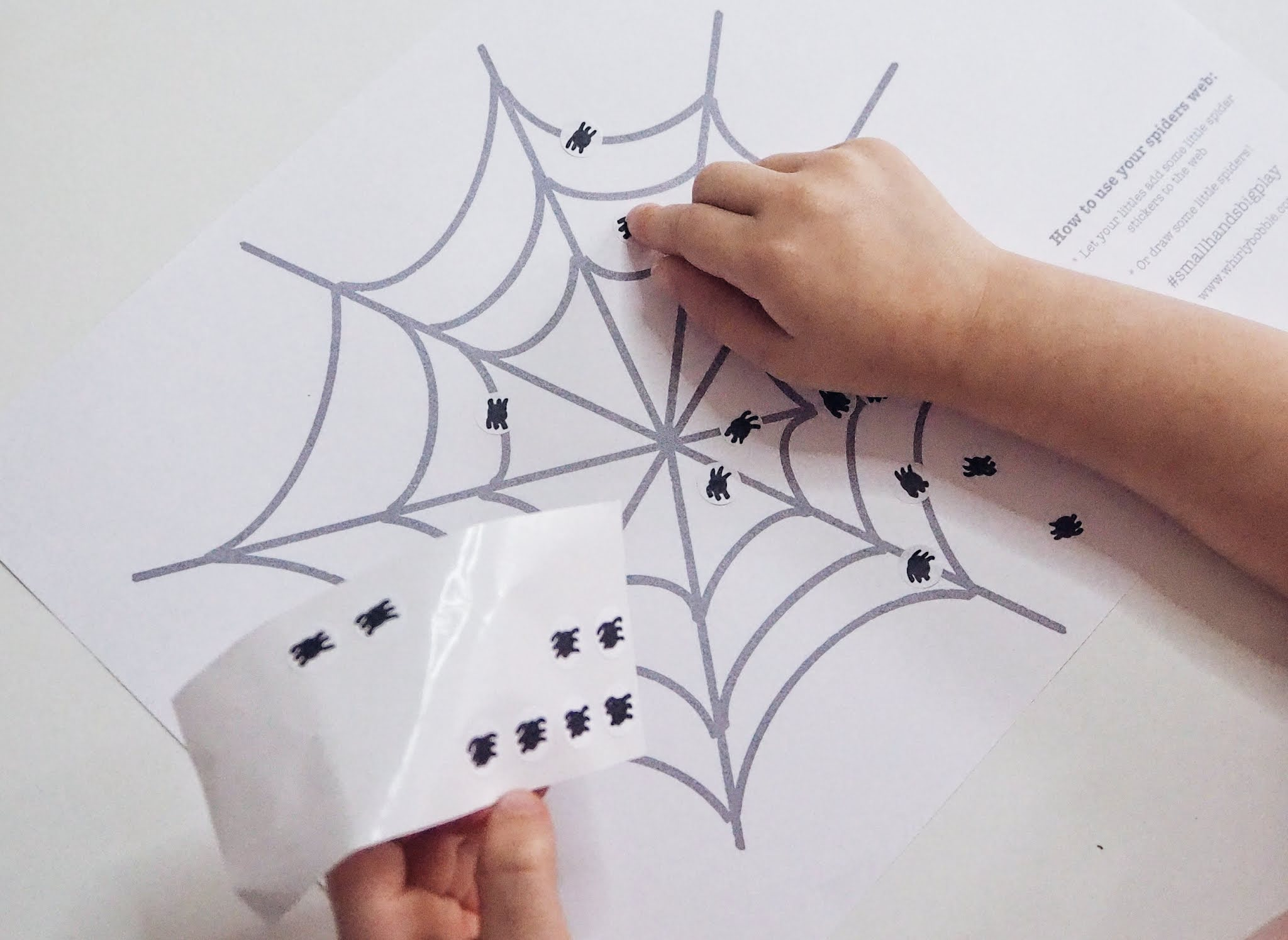 spider web sticking activity