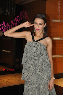 Indian Actress Model Alesia Raut Stills in Sleeveless Long Dress  0022.JPG