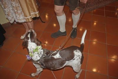 Hund mit Blumenhalsband - Trachten-Hochzeit im Riessersee Hotel Garmisch-Partenkirchen