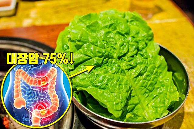 대장암에 좋은 음식, 상추 효능, 항암음식, 건강, 팁줌마 매일꿀정보