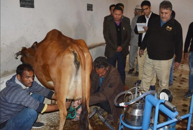 union budget 2020 expectations government should look into dairy sector to boost farmer income