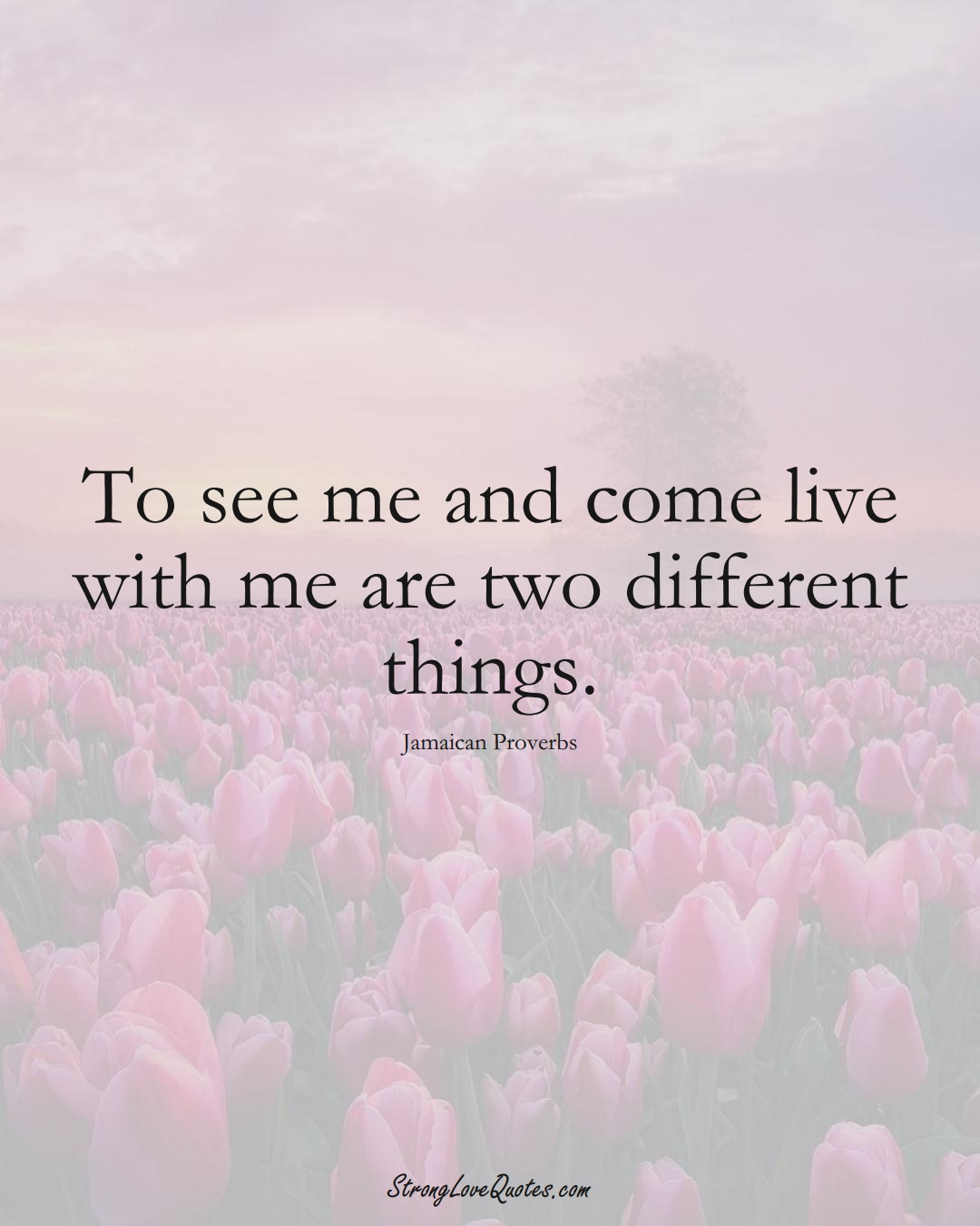 To see me and come live with me are two different things. (Jamaican Sayings);  #CaribbeanSayings