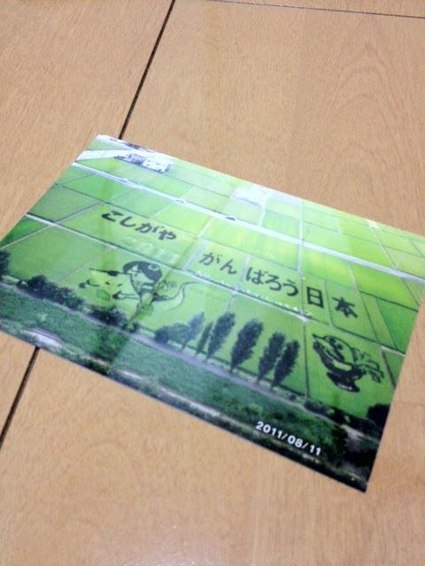 こしがや田んぼアート2011ゲゲゲの鬼太郎(写真)