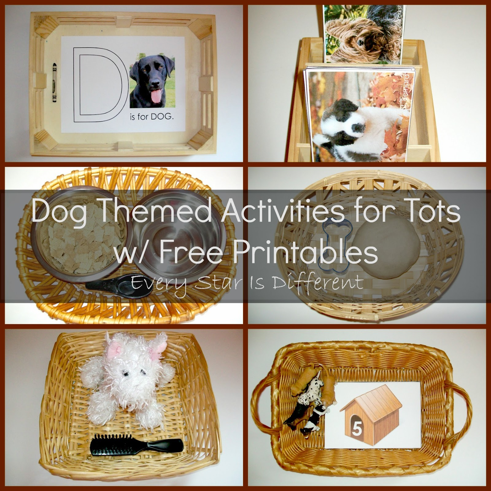 Dog Activities for Tots