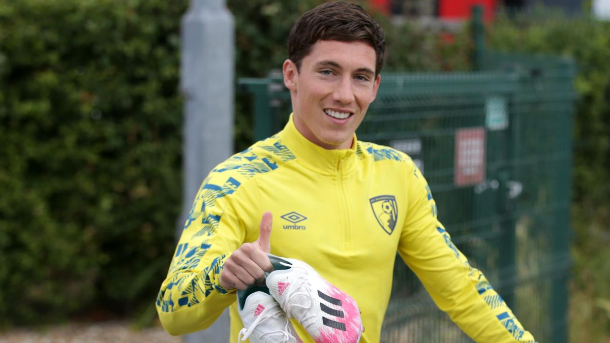 Harry Wilson joins Cardiff City on loan.