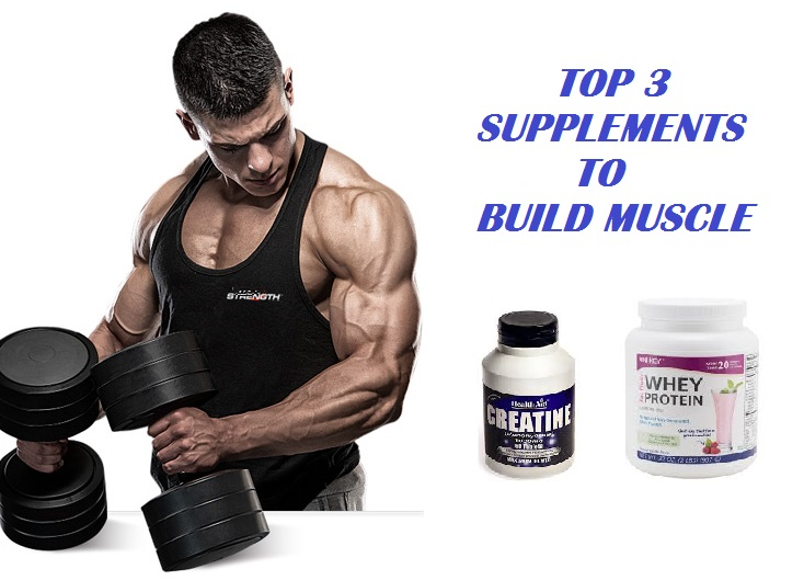Muscle Palace: The 3 Best Muscle Building Supplements - The Only Supplements You Need to Build