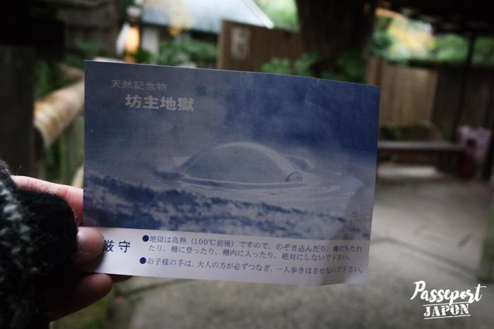 Billet d'entrée, Bôzu Jigoku, Beppu, Oita