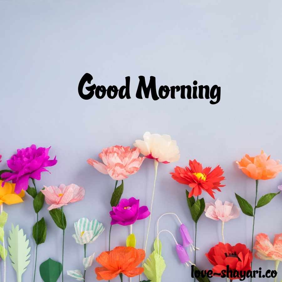 flower images with good morning