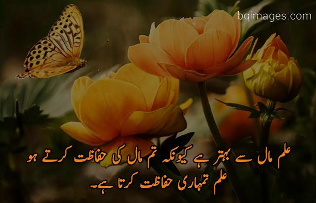 golden words in Urdu for students