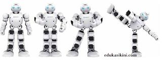 Apa itu Robot Manusia?