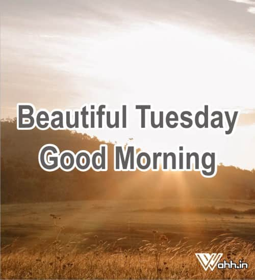Beautiful-Tuesday-Good-Morning