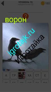 два ворона сидят на ветке и каркают 15 уровень 400 плюс слов 2