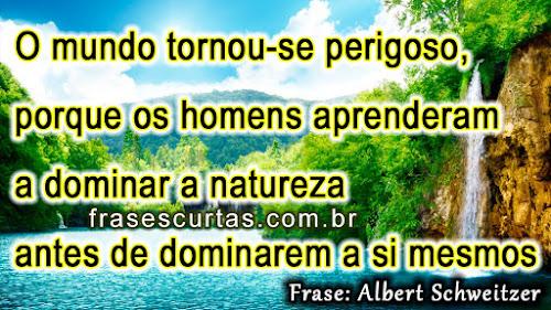 O mundo tornou-se perigoso, porque os homens aprenderam a dominar a natureza antes de se dominarem a si mesma